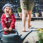 生花(花苗・切り花)とプリザーブドフラワー。楽しみ方の違い。〈育てる楽しみ・組み立てる楽しみ〉(1)