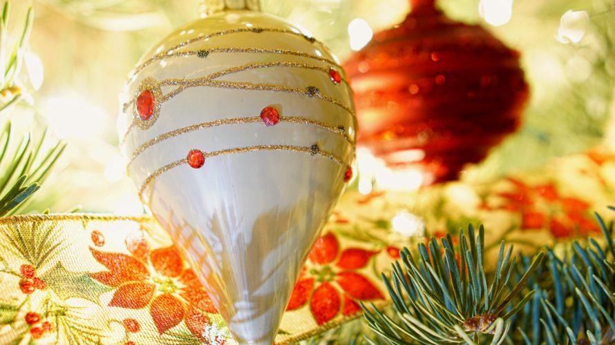 クリスマスにぴったりの花鉢◎ポインセチアとシクラメン