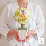 【夏の新作④】お花なの?木なの?まぁるくふわふわ。トピアリー【プリザーブドフラワー・アーティフィシャルフラワーミックス】