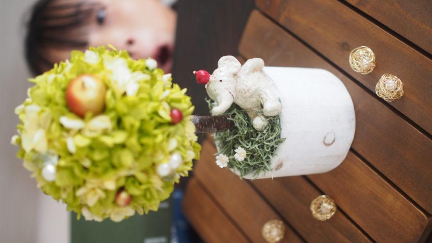 【ひさびさの】DIYやったり、観葉植物を迎え入れたり【ゆるり週末日記】